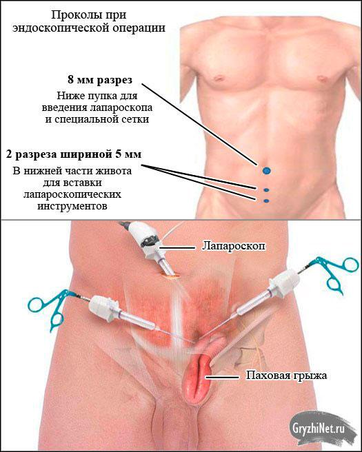 Стоматология Астра Дент в Киеве - отзывы, цены на услуги в