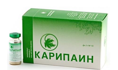 Карипаин при грыже позвоночника: показания, состав, способ применения, противопоказания, условия хранения, срок годности, отзывы
